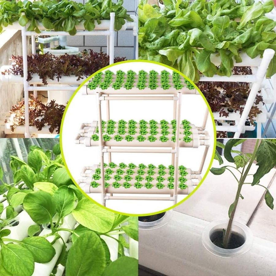 best hydroponics kit supplier